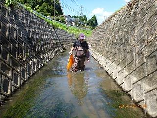 水と緑の会(調査研究部会)1