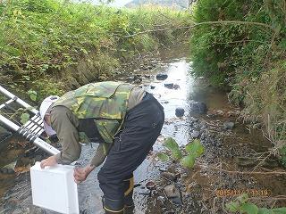 水と緑の会(調査研究部会)2